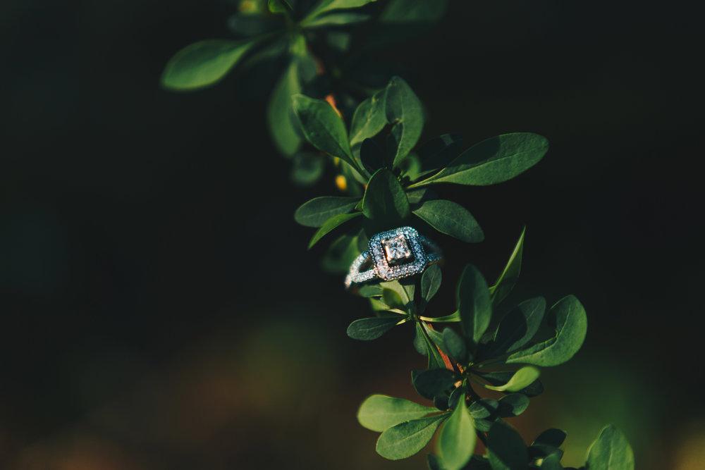 Nashville Wedding Photographer_K&M Engagement Session-7