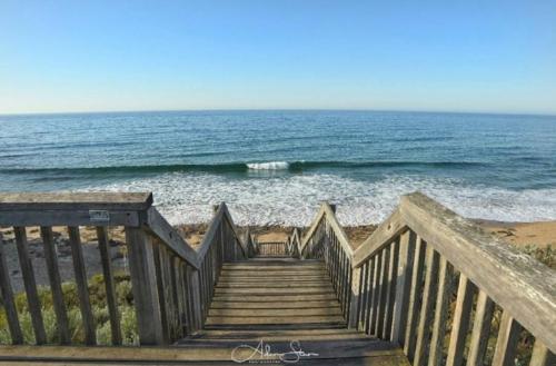 Adam Stan Surf Summer 2.jpg
