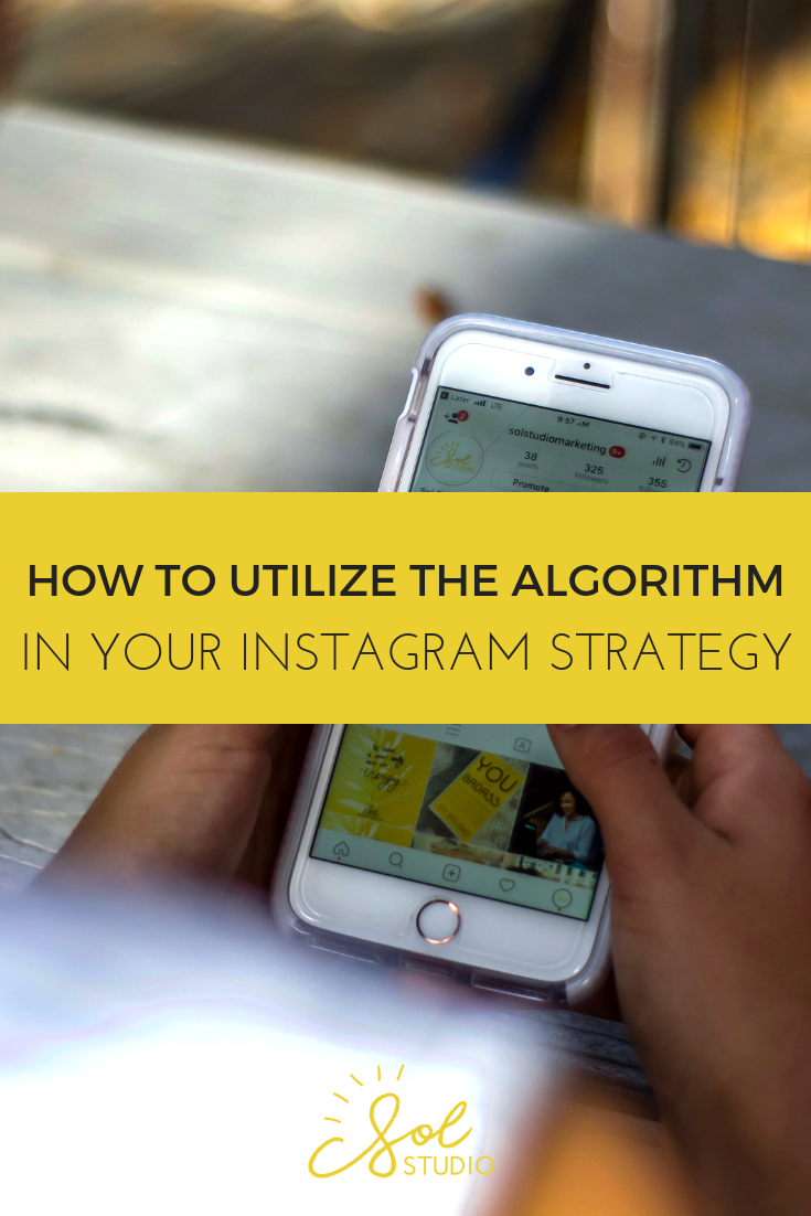 Picture of Blog Post About Instagram Algorithm