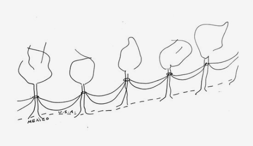 A sketch from JM Design Studio's proposal in Phase 1, depicting a strand of trees connected by hammocks running along the border.