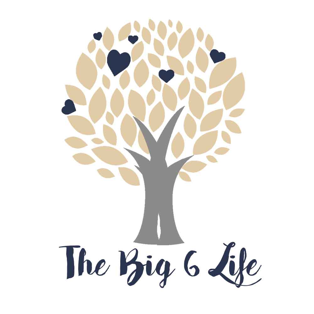 The Big 6 Life.jpg