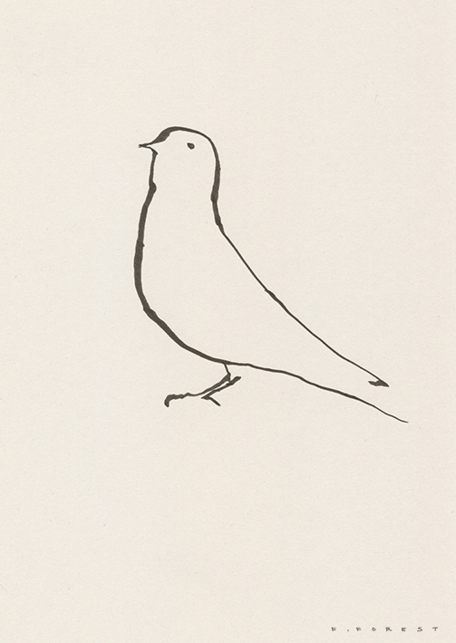 FForest_Drawing_Bird1.jpg