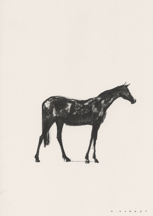 FForest_Drawing_Horse8.jpg