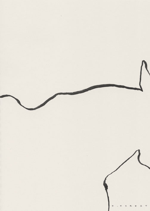 FForest_Drawing_Horse10.jpg