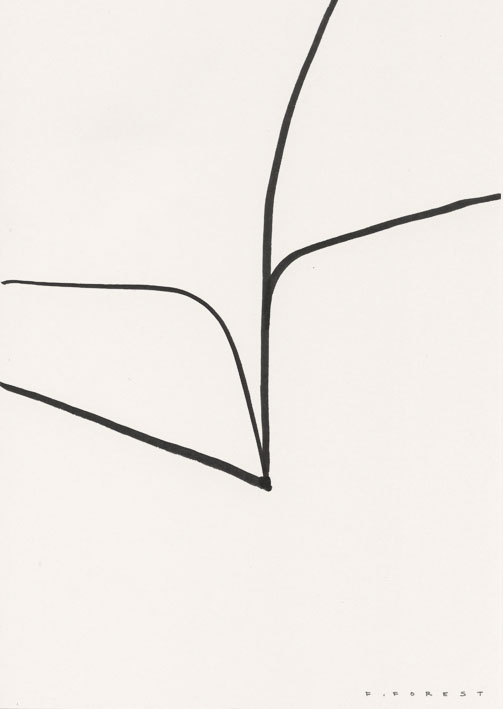 FForest_Drawing_Plant#33.jpg