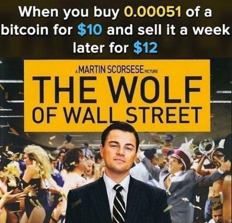 wolf-meme.jpg