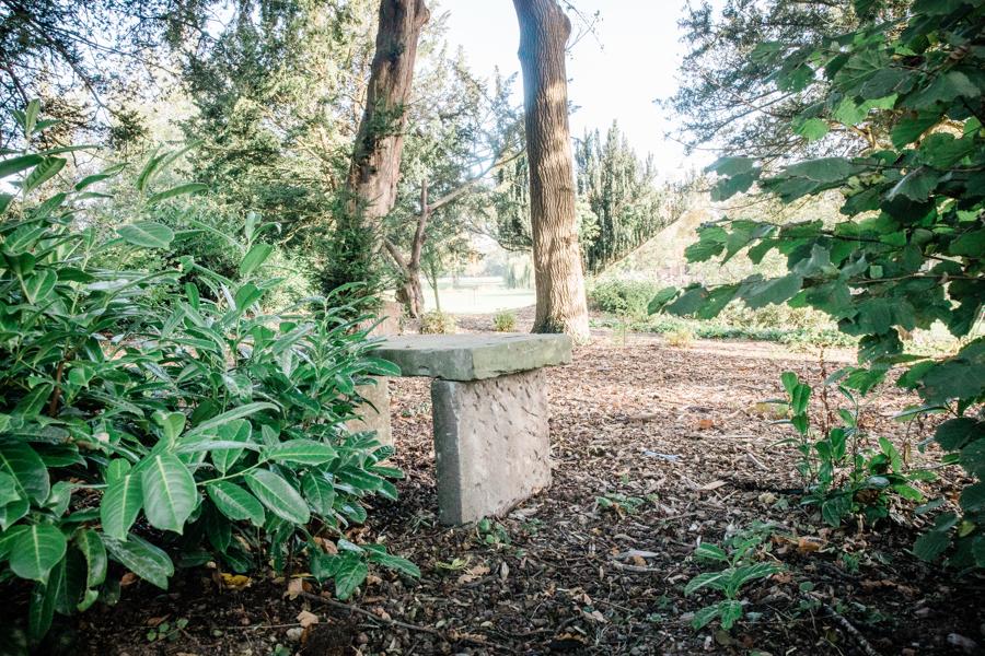 Bench in Woodland.jpg