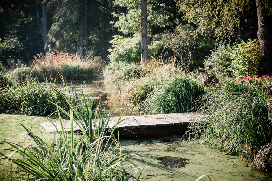 Wooden footbridge over pond.jpg