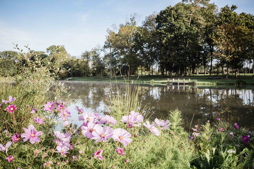 Flowers Hanley Hall lake for web.jpg