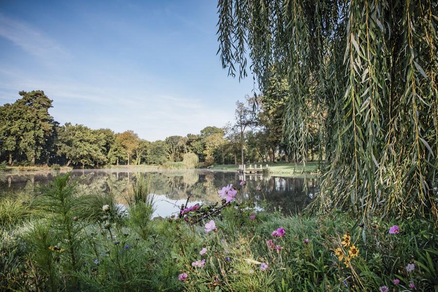 Lake and Gardens at Hanley Hall.jpg
