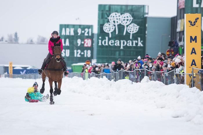 Duudsonien Jarppi oli vauhdissa pulkalla hevosen kanssa Lumiraveissa. (Kuva: Hanna Heinonen)