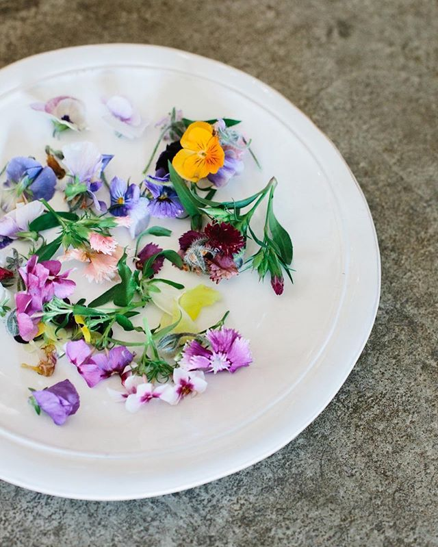 Edible flowers blooming from Kalice's heart! Happy Sunday 🌸🌼🌸🌼 Chef | @kalicebrun  Photography | @mayamarechal #secretgardensupperclub