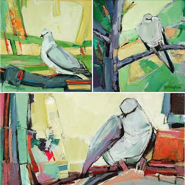 If you're looking for a truly personal #gift, you'll find three framed 12x12 #dove #paintings @jrbgallery @paseoartsdistrict...