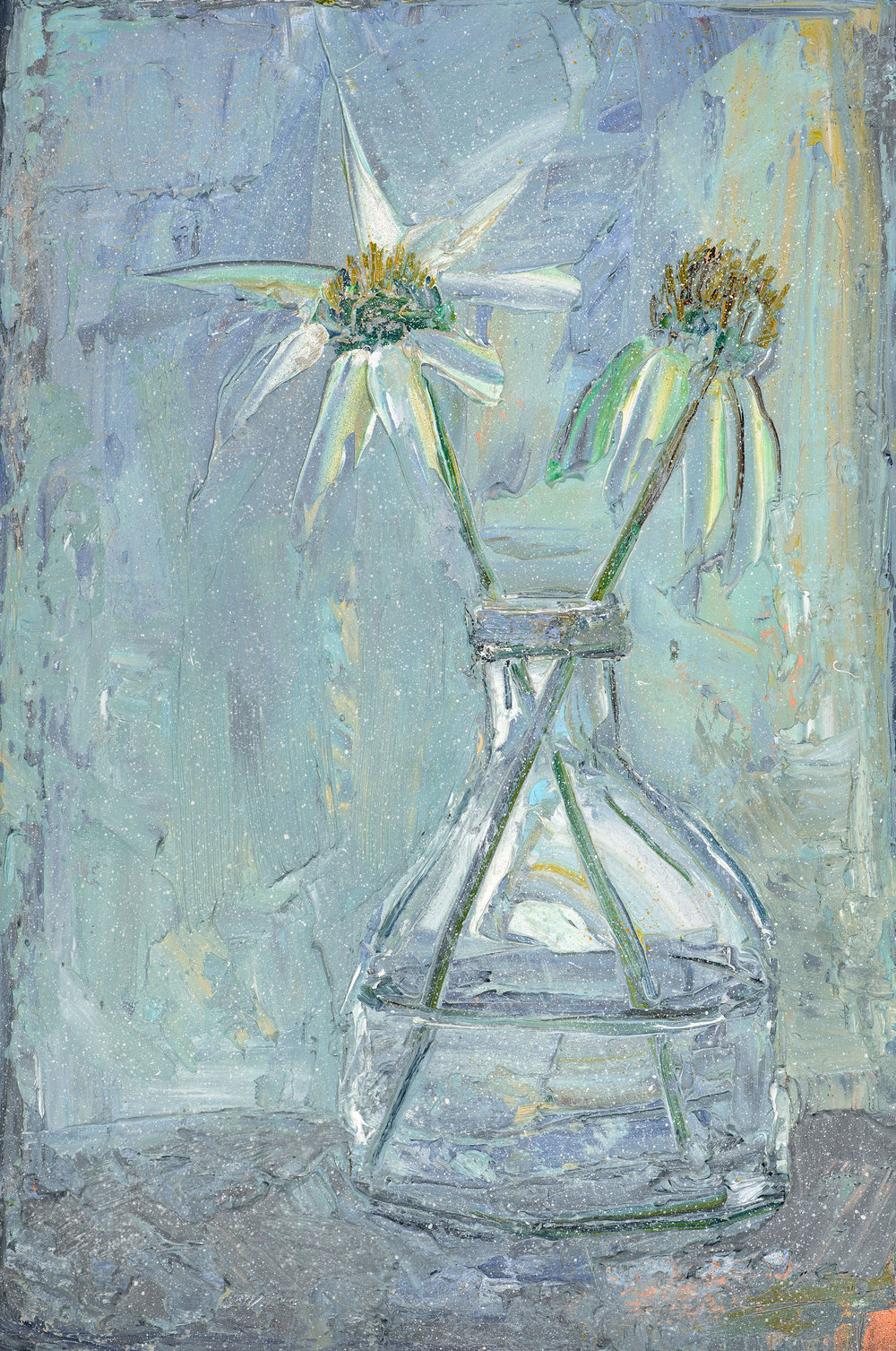 Echinacea in Glass