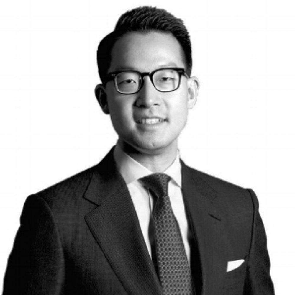 John Riady    Director of the Lippo Group  Professor of Law at Universitas Pelita Harapan  Editor of the Jakarta Globe  Director of Berita Satu Media Holdings