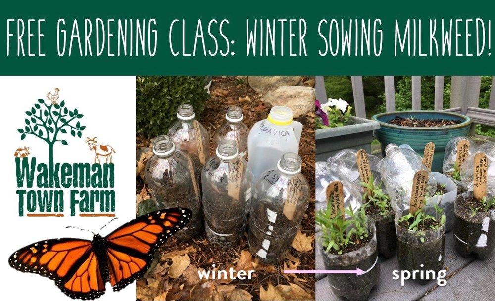 2019 Flyer for Winter Sowing Workshop 1 PAGER.jpg
