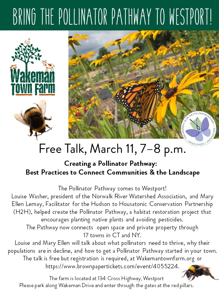 2019 Flyer for Pollinator Pathway talk.jpg