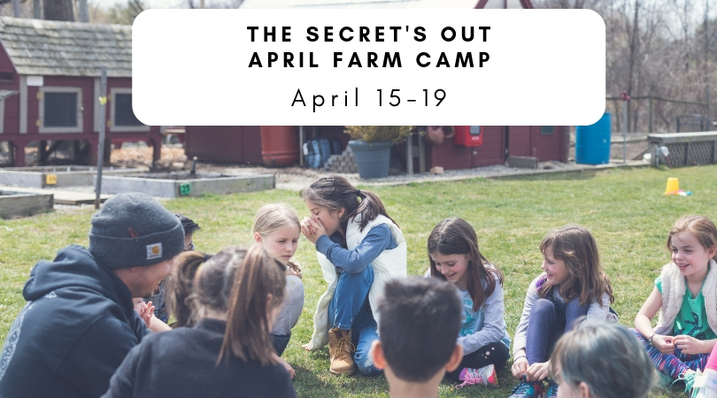 April Farm Camp.jpg