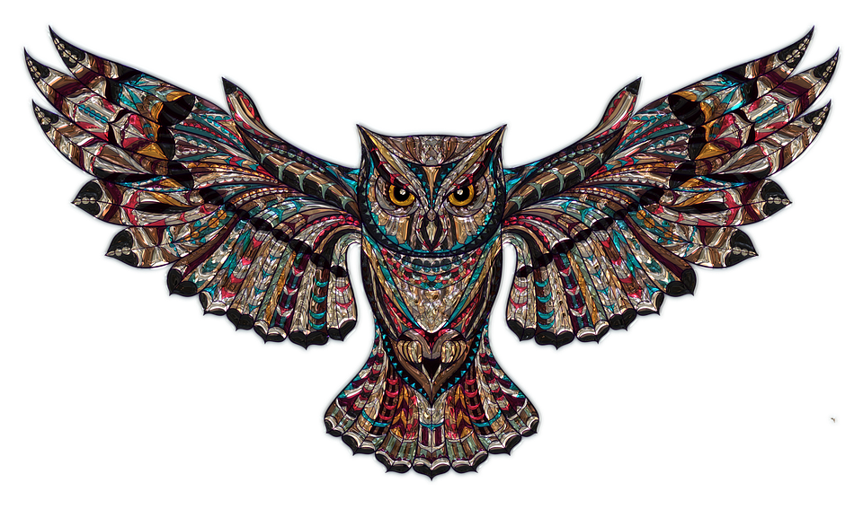 owl-1791700_960_720.png