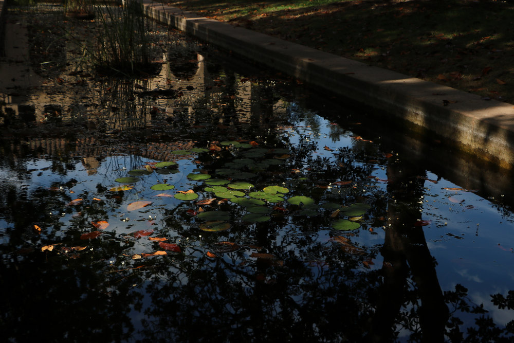 fall 17 slideshow-19.jpg