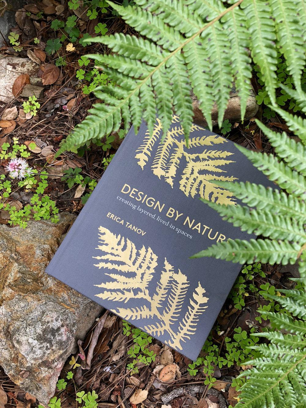 book:fern.JPG