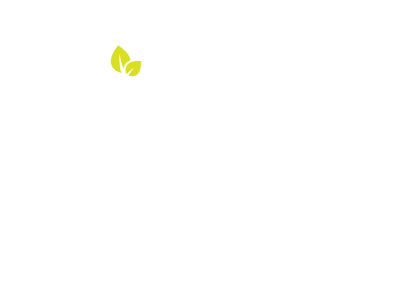 Aisha Gomez for 62B