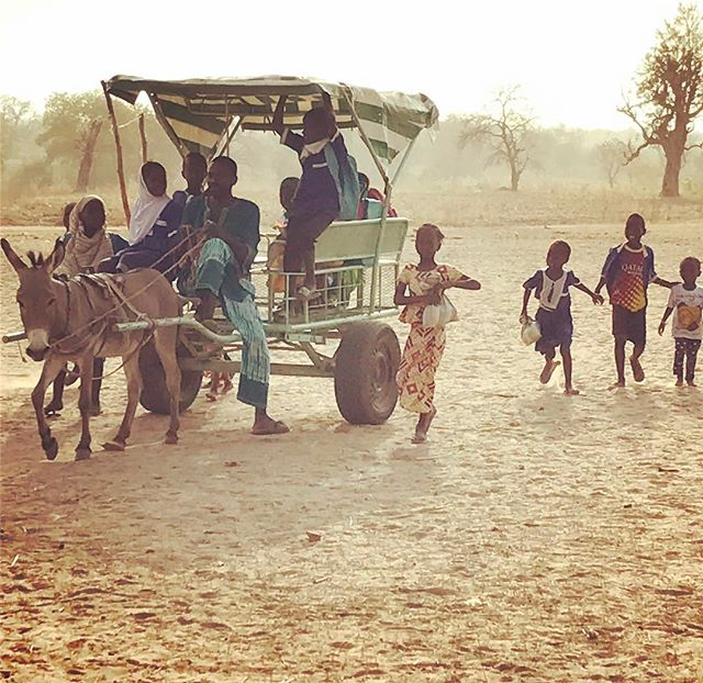 The past week we performed a technical and social study if the donkey carts we've been working on are an effective. And we must say are proud of the result that these mostly young children have secure access to their schools. Let's hope that this community managed intervention can be scaled up successfully! #gambia #school #lowtech #donkey #mobse #worldbank