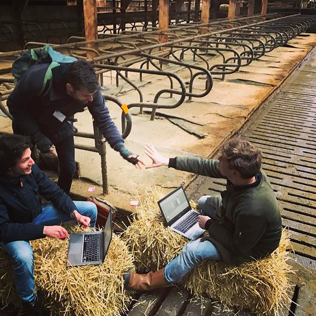 #andthepeople just had an immersive  experience in designing new approaches for the 3000 farms that will become vacant in #overijssel #youandthepeople