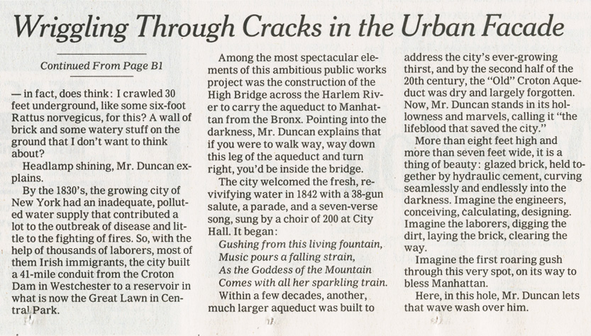 NYTimes042906_2.jpg