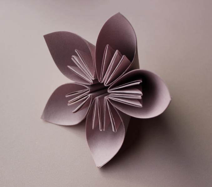 Foldability - Pink Flower.JPG