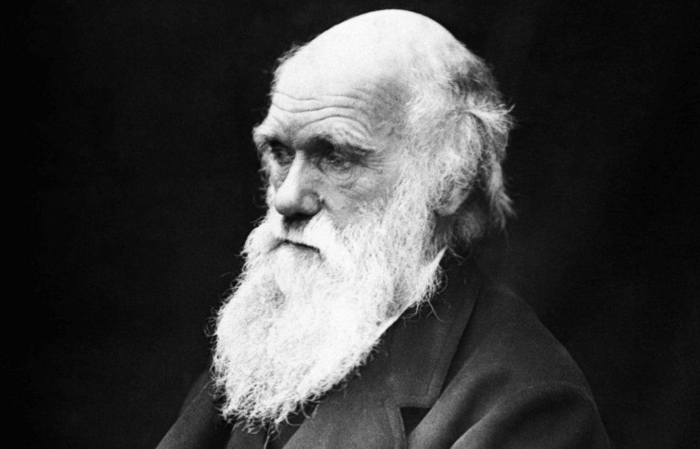 Charles_Darwin_Old.jpg
