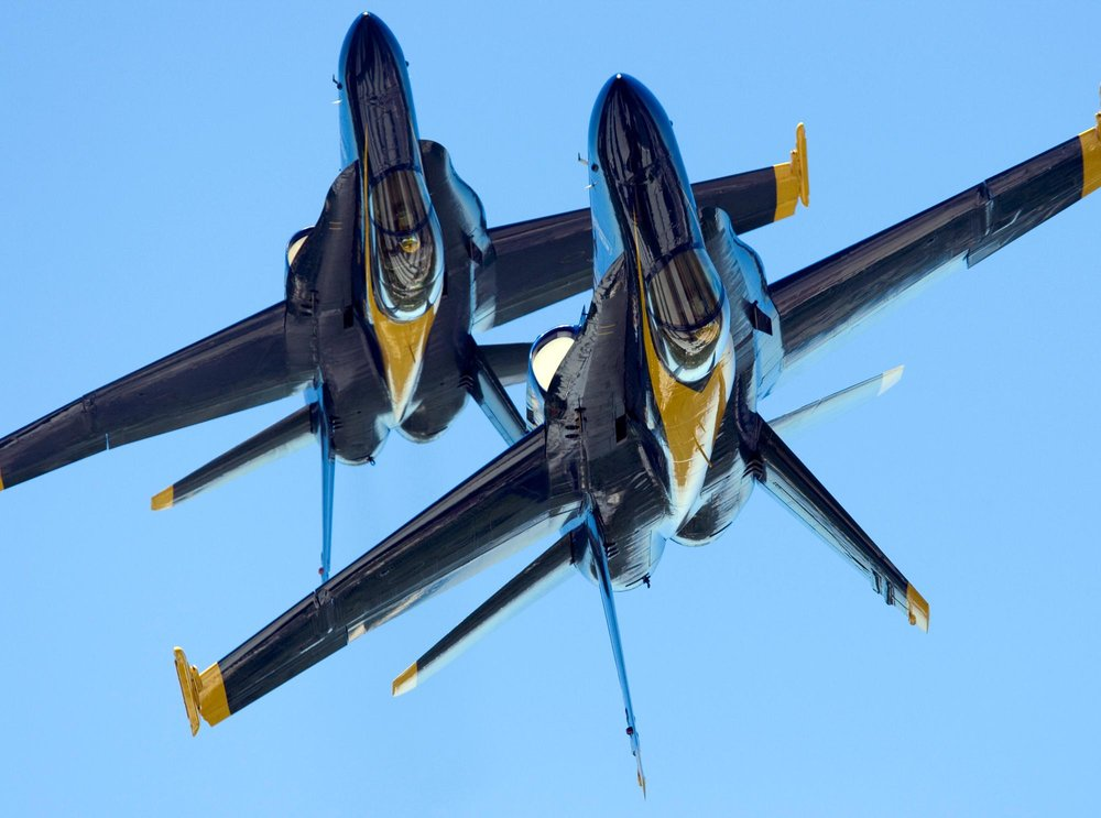 blue-angels-oceana-2008.jpg