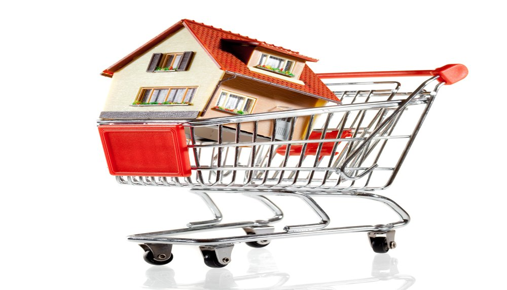 House in cart2.jpg