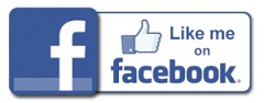 Like FB Icon 240.jpg