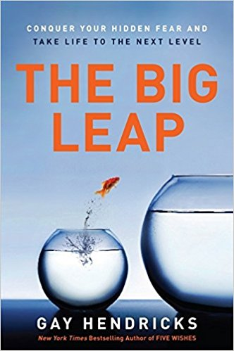 The Big Leap: Conquer Your Hidden Fear ad Take Life to the Next Level by Dr. Gay Hendricks ($9.48) -