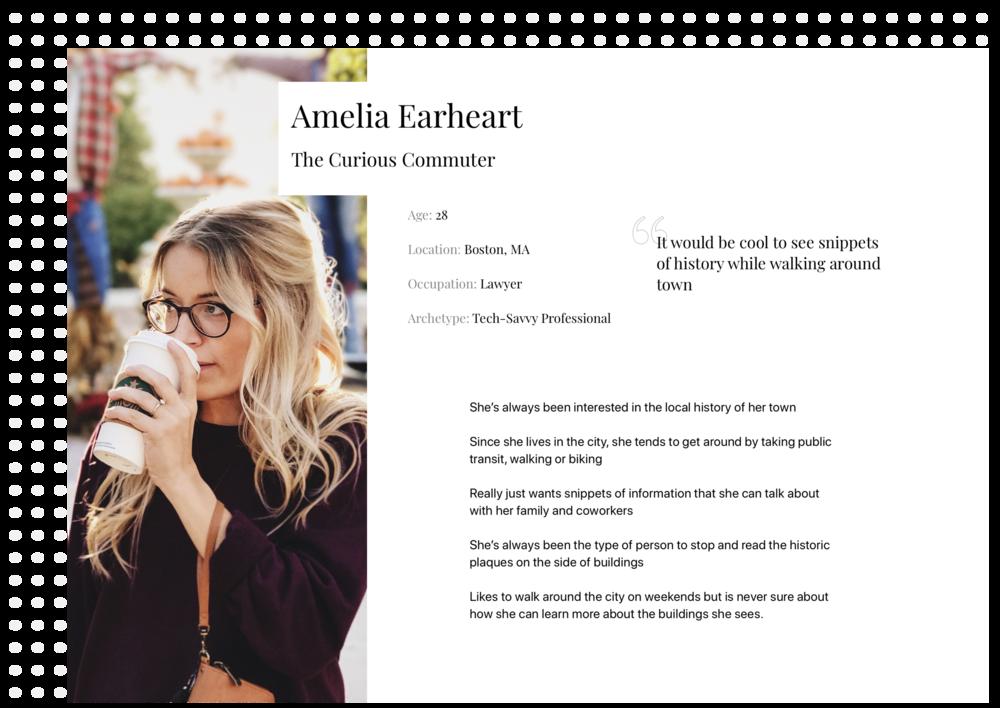 Amelia User Persona