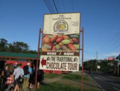 Chocolate Plantation