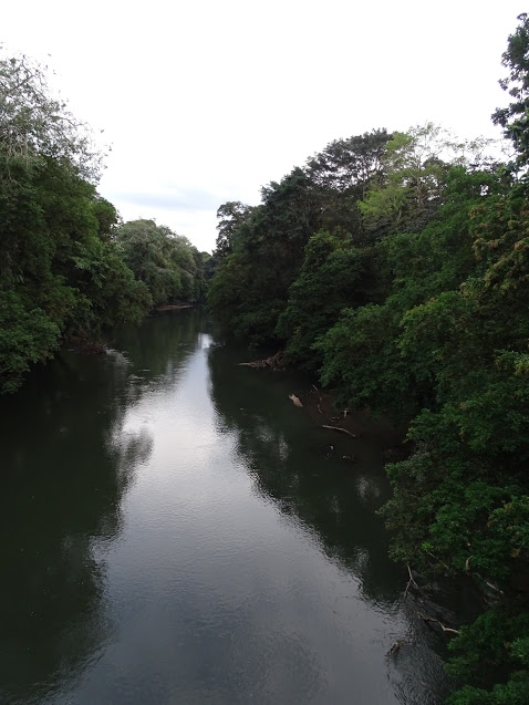 This picture was taken from a bridge when we went on a hike at OTS (Organization for Tropical Studies). It is a picture of the river that we went rafting on the following day. It was a great, big river that seemed to go on forever. It was so beautiful.  -Maia Davis