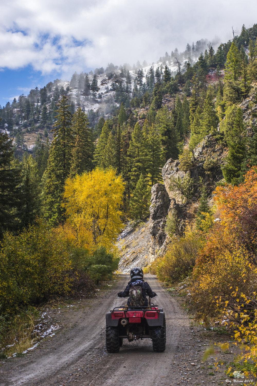 'Roads Through Seasons'