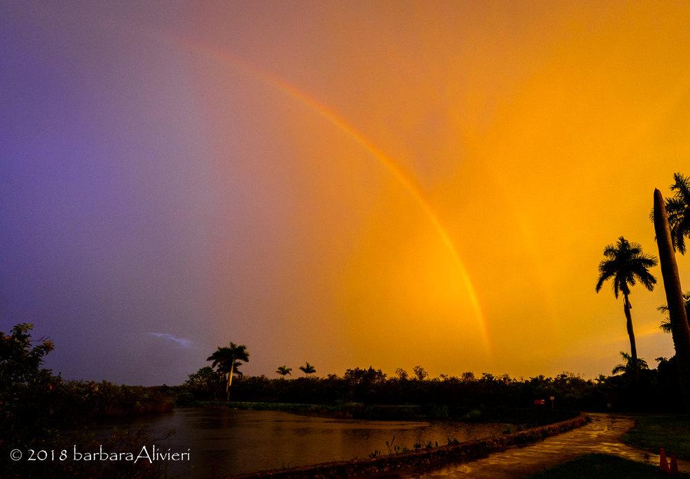 Storm cloud rainbow. Anhinga Trail, Everglades National Park