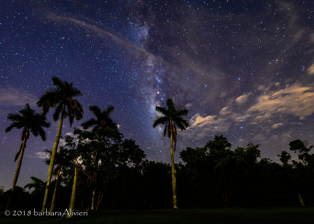 Milky Way with some wispy clouds. - Anhinga Trail, Everglades National Park