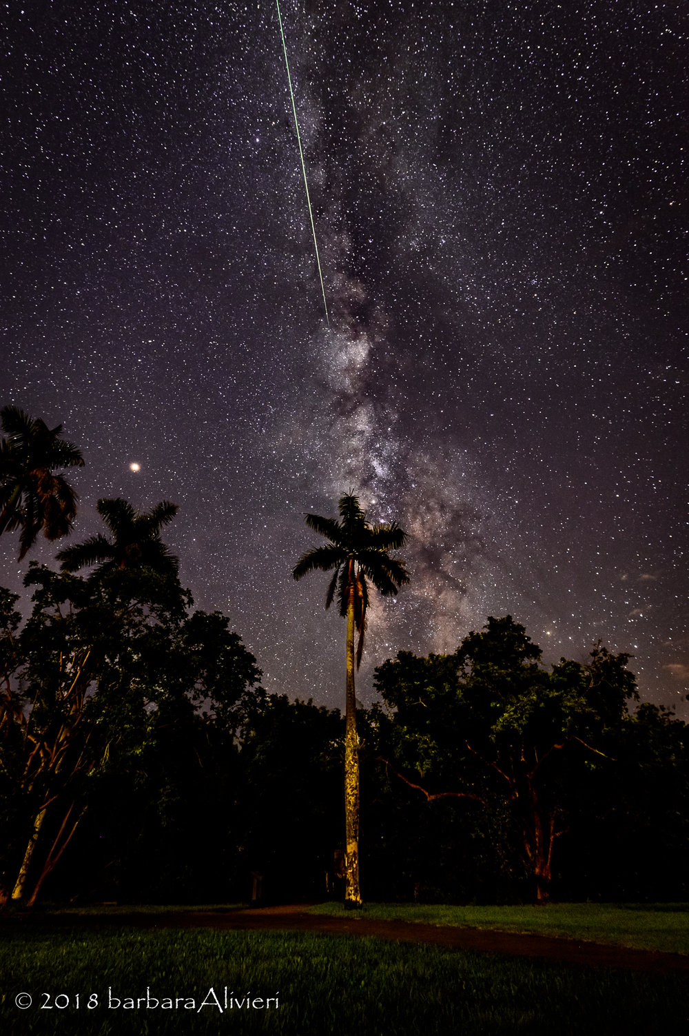 Milky way AND a meteor. Sweet! Anhinga Trail, Everglades National Park
