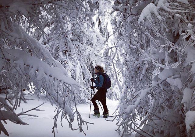 Eisbar Adventures 📷 @pavlinarezna . . . . #travel #skiing #ski #snow #winter #mountains #fashion #girl #style #beauty #winterfashion #nature #outdoors #photography #exploretheworld #explore #selfie