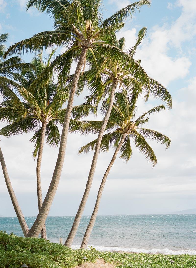 romantic-wedding-photos-destination-wedding-photographer-maui-hawaii-01.JPG