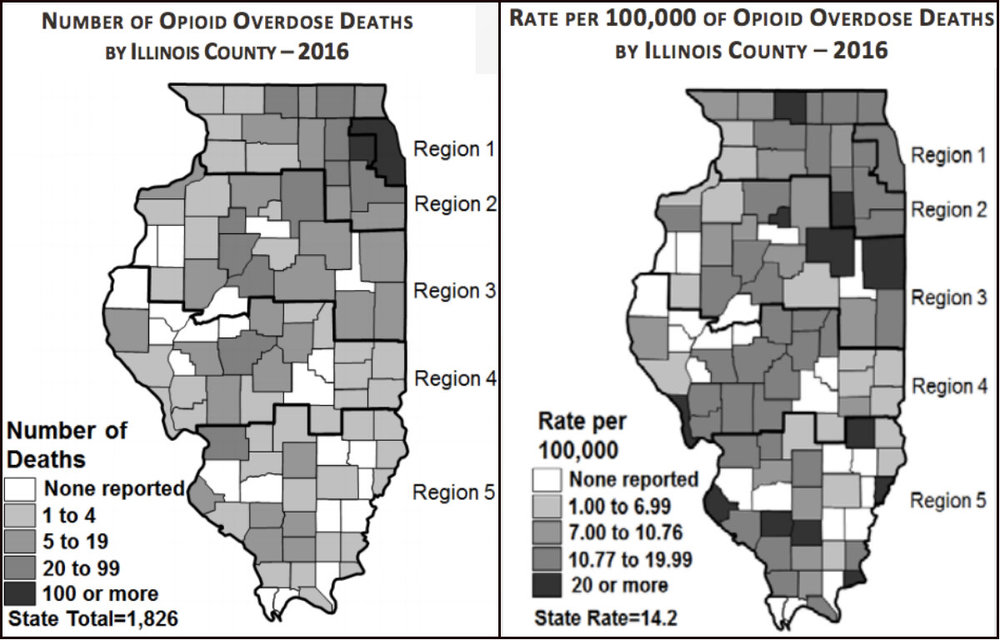 [Illinois Department of Human Services]