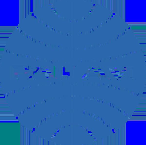 Pan Am copy.png