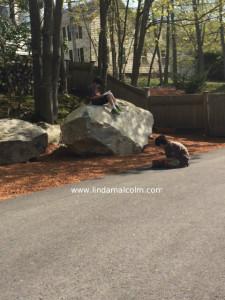 boys reading on rock