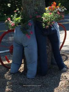 pants in bloom