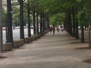 DC planters along street