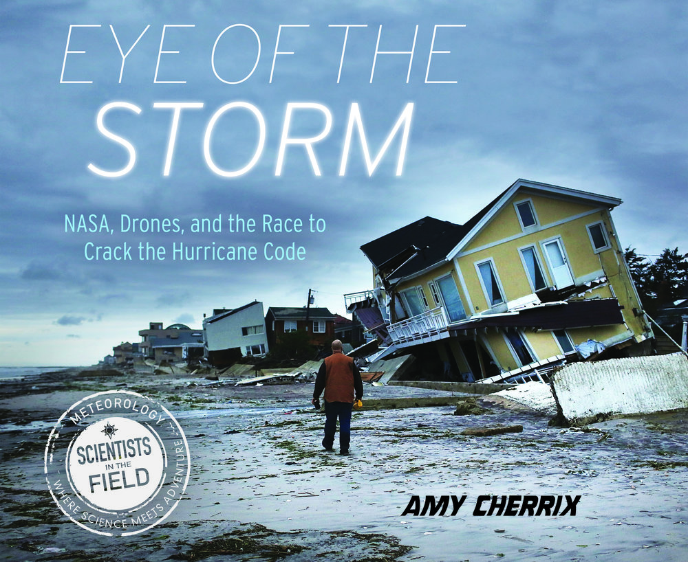 EYE_OF_THE_STORM_cover.jpg